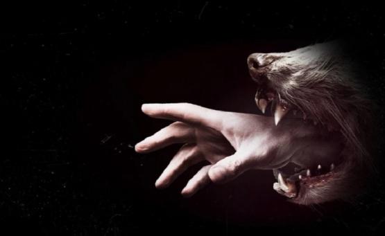 Netflix: Tres series atrapantes y perturbadoras para ver el fin de semana