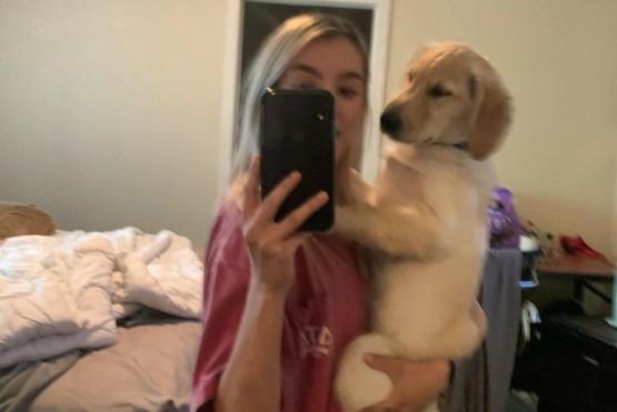 """Un cachorro se volvió viral por tener """"cola de humano"""""""