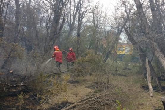 Brigadistas controlaron incendio en cercanía de Cholila