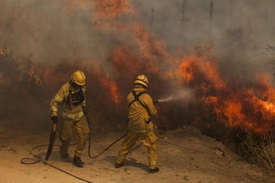 Crearon un premio de 10 mil pesos para los bomberos que combaten incendios forestales