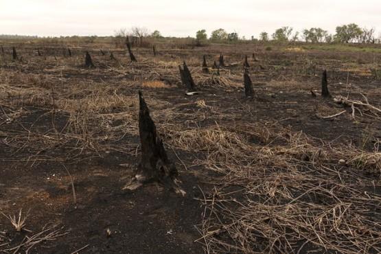 Llovió en Córdoba y se extinguieron los incendios en las sierras