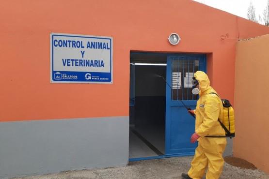 Realizaron labores de desinfección en las dependencias de Veterinaria y Control Animal