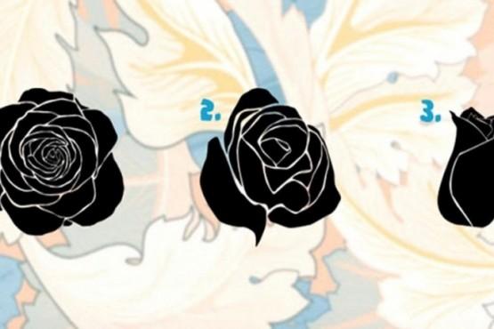 Test psicológico: elegir una flor te hará descubrir detalles íntimos de tu personalidad