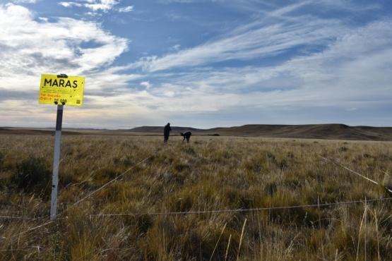 Aclaración del INTA en relación a datos erróneos sobre desertificación