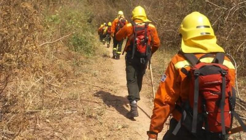 Brigadistas forestales de Santa Cruz comenzaron actividades