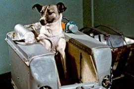 Laika es lanzada al espacio a bordo del Sputnik 2