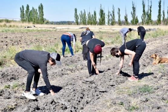 Unos 20 productores trabajan 150 hectáreas recuperadas de producción