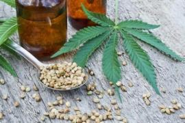 """Pablo Fazio: """"Argentina puede ser un actor relevante en el emergente mercado del cannabis"""""""