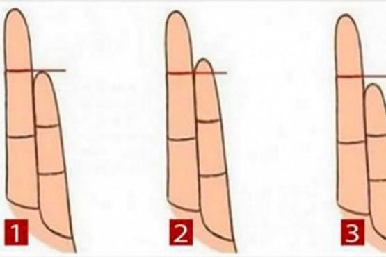 Dime la longitud de tu dedo anular y te diré cosas íntimas de tu personalidad