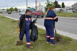 Obras Públicas: durante el fin de semana se hicieron diversos trabajos en la ciudad