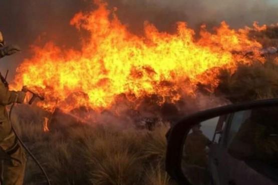 Pronostican más incendios forestales para el verano