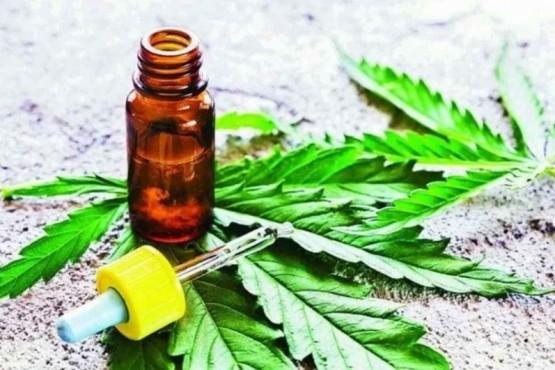 Se aprobó el uso del Cannabis medicinal.