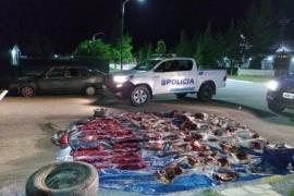 Incautaron 500 kilos de carne