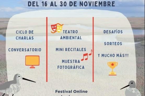 Festival de Aves Playeras