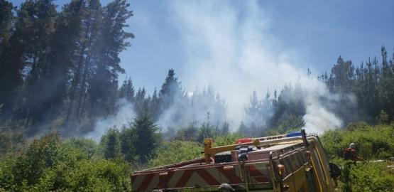 El Hoyo| brigadistas contuvieron el avance de un incendio
