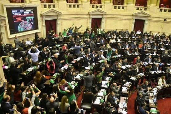 Cómo votaron los diputados de Santa Cruz la media sanción del ´Aborto Legal´