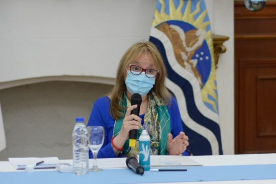 Alicia Kirchner envió el Proyecto de Ley a Diputados.