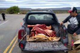 Secuestro de carne faenada