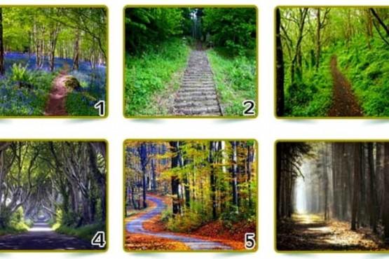 Test visual: elegí un sendero y descubrirás mucho sobre tu personalidad