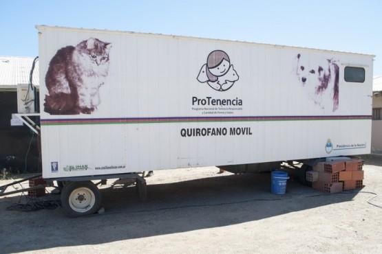 Caleta Olivia| El Centro de Sanidad Animal permanecerá en Zona de Chacras hasta el 27 de enero