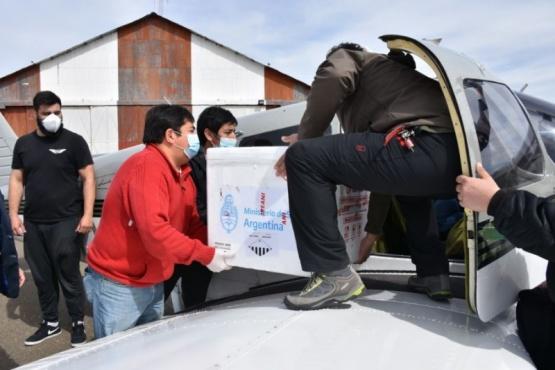 Puerto Santa Cruz | Llegaron las vacunas contra el coronavirus