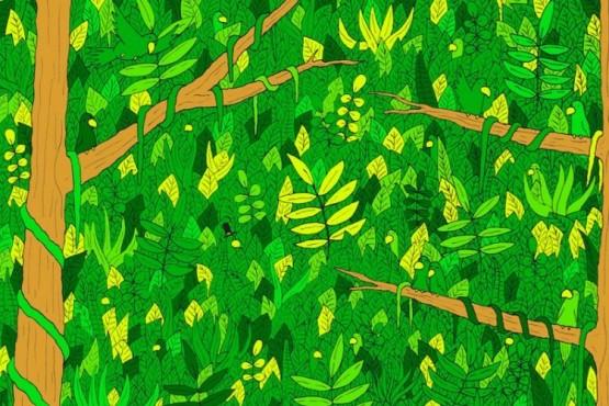 Reto visual: encontrá la serpiente escondida en la selva
