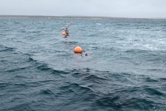 Controlan marea roja en Camarones y Bahía Bustamante
