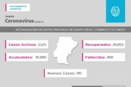 Santa Cruz| Coronavirus: Se registraron 310 casos nuevos