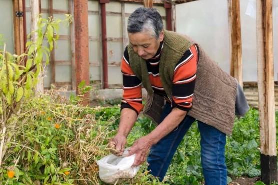 Se estudió el sector agrícola familiar de la provincia