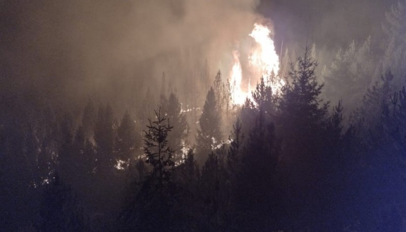 Chubut| Brigadistas combaten Incendio de bosques en Epuyén