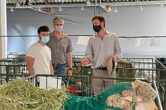 Chubut| Torres en la 95° exposición ovina en Esquel