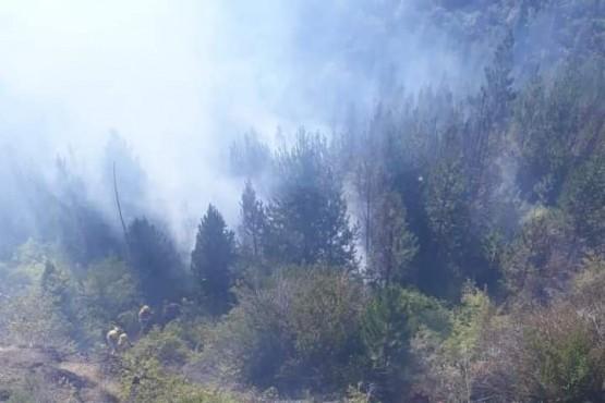 Epuyén| Dieron por controlado el incendio