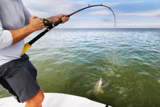 La AFIP anunció una subasta de artículos de náutica y pesca secuestrados