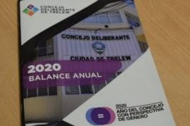 """El Concejo Deliberante de Trelew hizo un """"balance anual 2020"""" con Perspectiva de Género"""