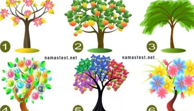 Test del árbol: la imagen que revela cualidades ocultas de tu personalidad