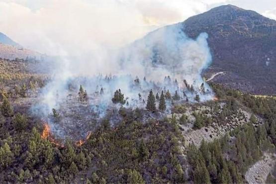 Cuesta del Ternero - Continúa activo el incendio en jurisdicción chubutense