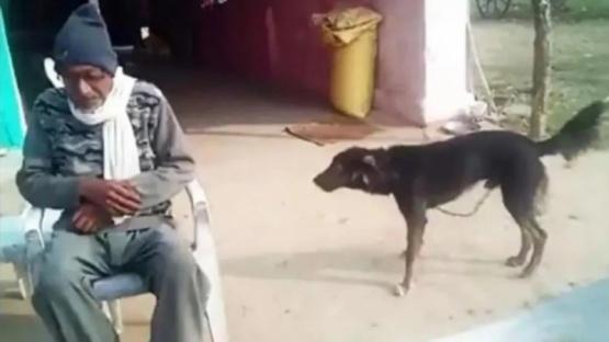 El hombre junto a su perro.
