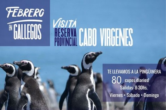 La Municipalidad de Río Gallegos duplica las plazas para disfrutar La Pingüinera