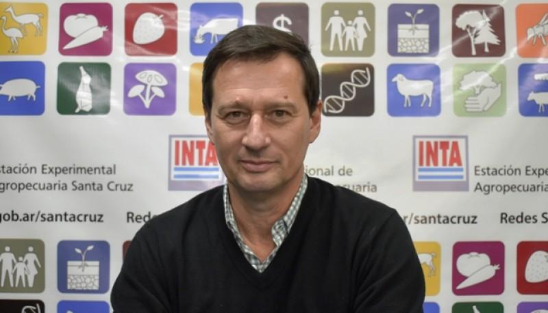 Fabio Moscovich