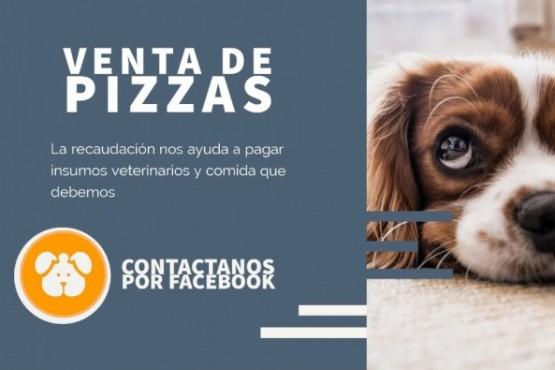 Amigos de 4 patas y Fundación Narices Frías organizan venta de pizzas.