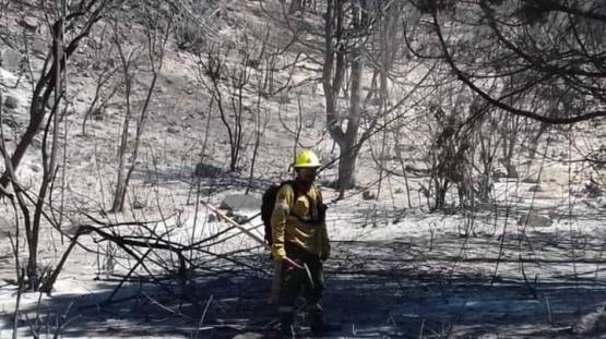 Contuvieron el incendio en Cuesta del ternero