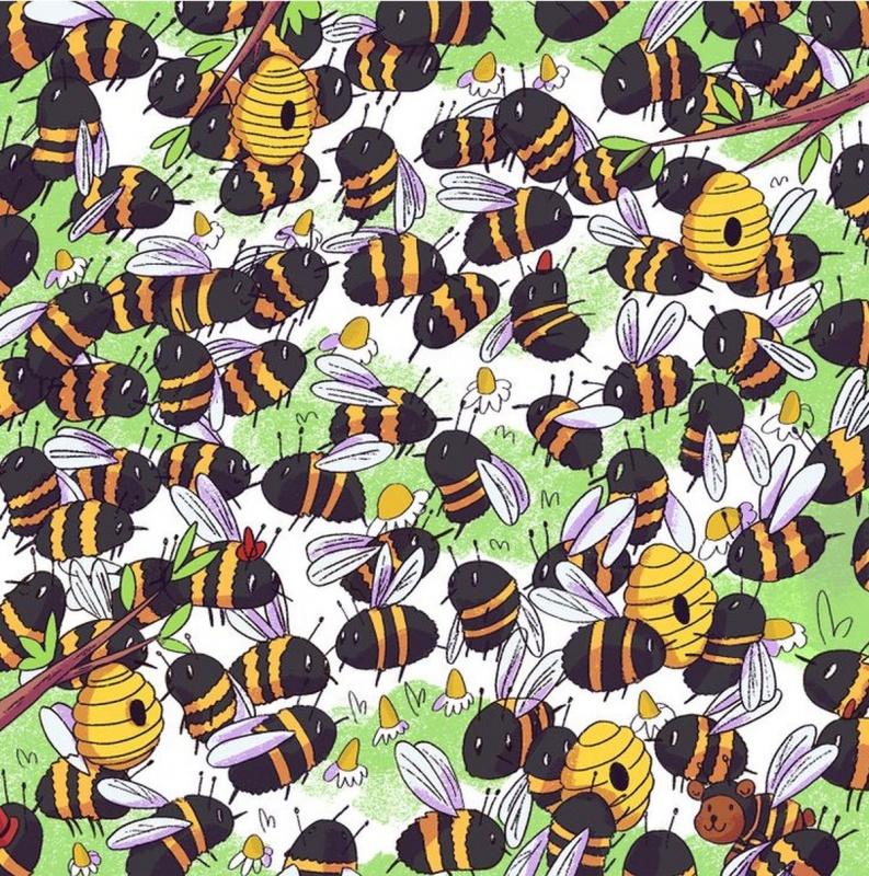 Encontrá al oso oculto entre las abejas en este reto viral