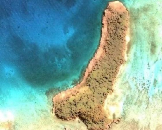Descubrieron una isla con forma fálica en Google Earth