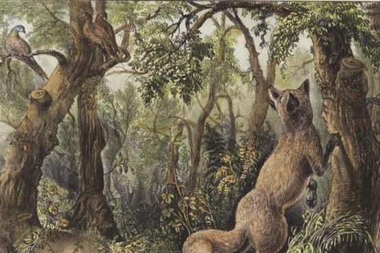 Reto viral: encontrar las 16 caras y animales escondidos en el paisaje