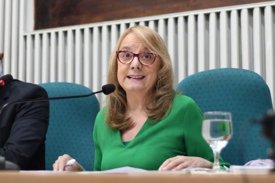 Alicia Kirchner en su discurso inaugural en la Cámara de Diputados.