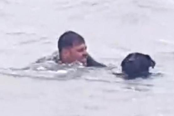 Momento del rescate a un perro.