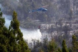 Extinguieron incendio en la reserva provincial el Turbio