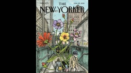 Liniers vuelve a ilustrar The New Yorker
