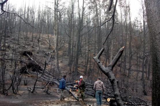 Gobierno del Chubut continúa trabajando en terreno con los damnificados por los incendios