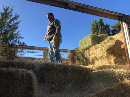 Chubut sigue asistiendo a los productores afectados por incendios